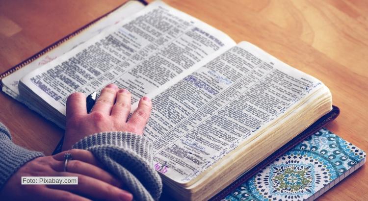 Mehr als ein Buch. Die Bibel.